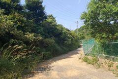 龜山楓樹坑保育農地
