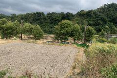 石門水庫農地